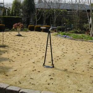 穴あけが終わった芝生