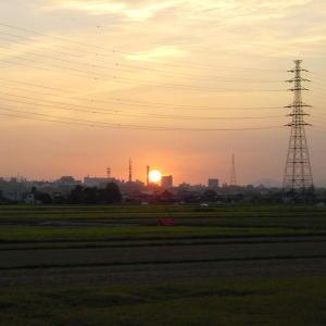 田んぼの向こうに、お彼岸の日没